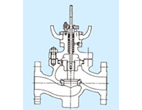Model 89 Top-Guided and Single Seated Globe Valves